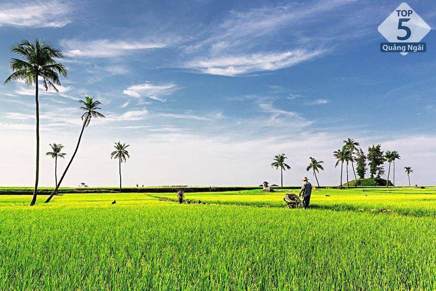 Top 5 địa điểm du lịch đẹp nhất Đảo Lý Sơn Quảng Ngãi